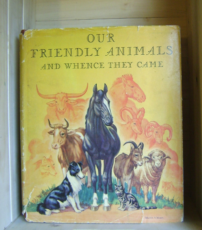 Image for Our Friendly Animals and Whence They Came
