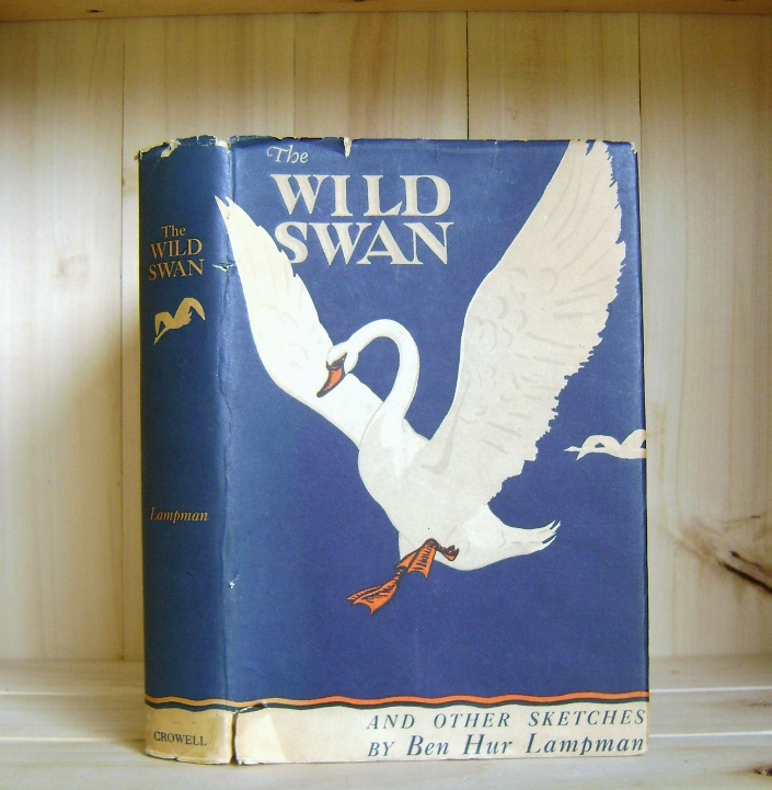 Image for The Wild Swan and Other Sketches