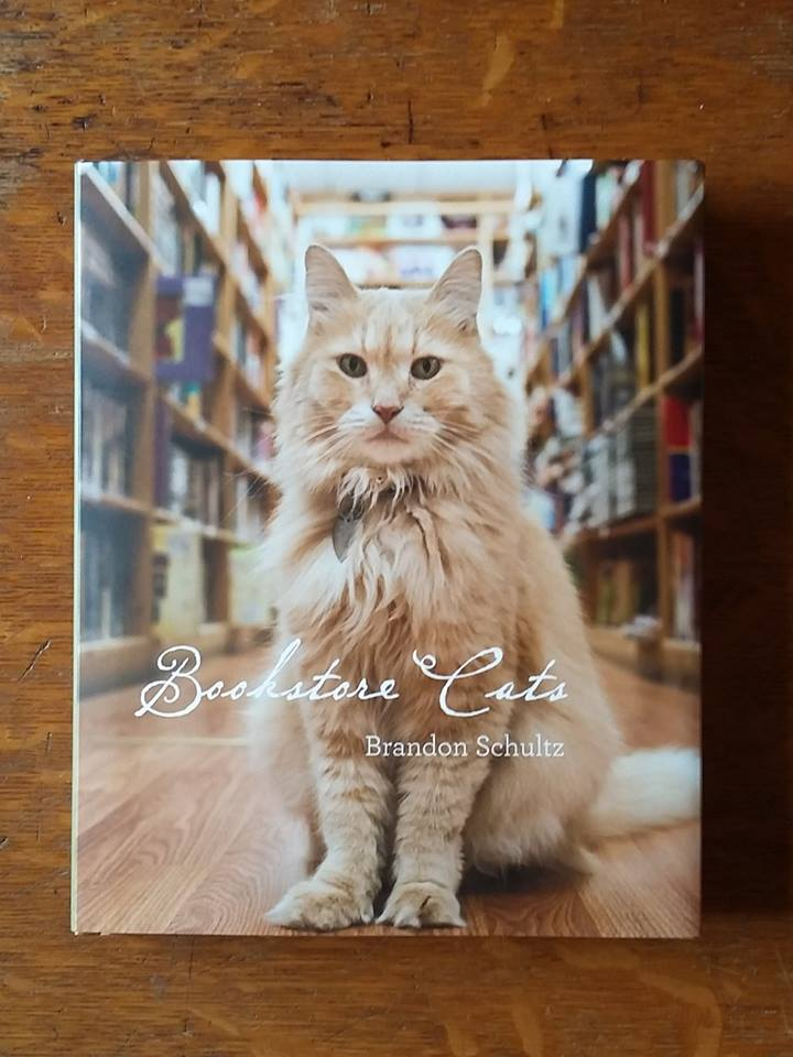 Image for Bookstore Cats