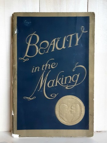 Image for Beauty in the Making: The Stepping Stones Thereto