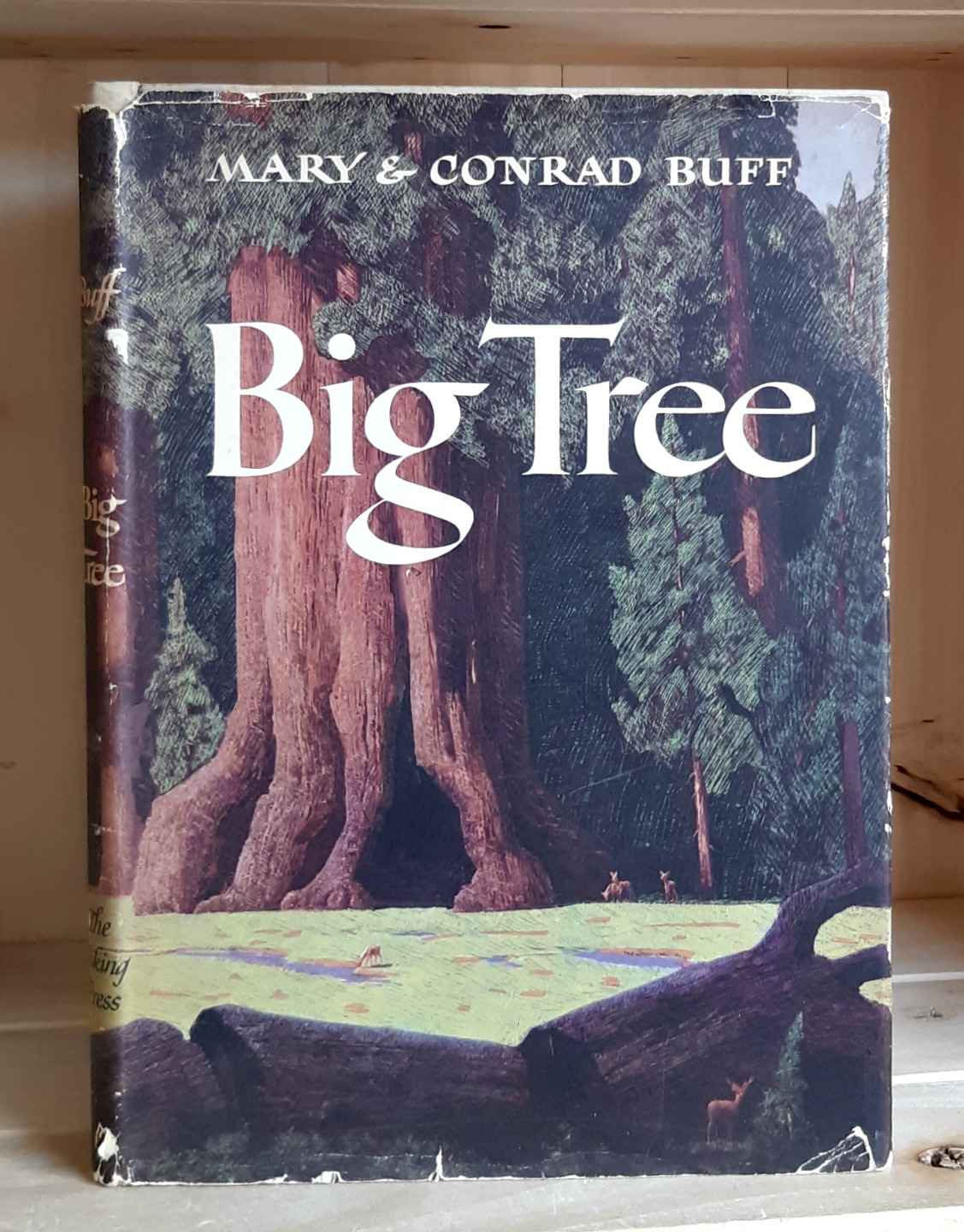 Image for Big Tree