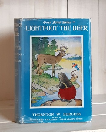 Image for Lightfoot the Deer