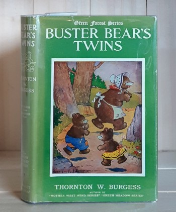 Image for Buster Bear's Twins