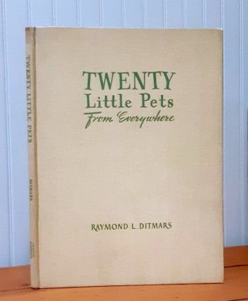 Image for Twenty Little Pets from Everywhere