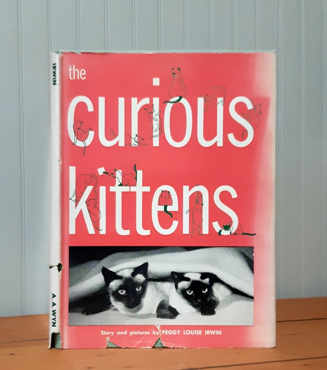 Image for The Curious Kittens