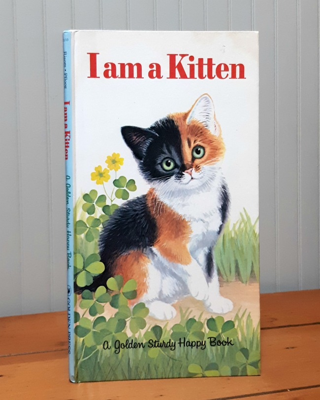 Image for I am a Kitten